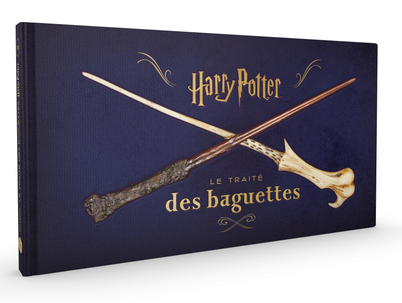 3d-hp-wands-fr-cover-marketing